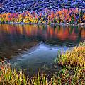Fall Color At Dusk Along North Lake by Scott McGuire