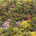 Fall Color In Little River Canyon by Bob Phillips