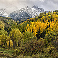 Fall Color In The Rockies Near Ouray Dsc07913 by Greg Kluempers