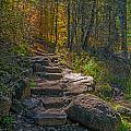 West Fork At Oak Creek by Tam Ryan