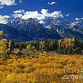 Fall Color Tetons Blacktail Ponds Grand Tetons Nationa by Dave Welling