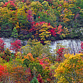 Fall Colors Along Tanasee Road by Duane McCullough