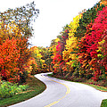 Fall Colors Along The Blueridge Parkway by Duane McCullough