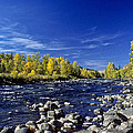 Fall Colors Along The Naches River by Jeff Goulden