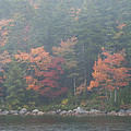 Fall Colors In Acadia National Park Maine Img 6483 by Greg Kluempers