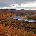 Fall Colors In The Arctic by Pekka Sammallahti