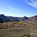 Fall Colors In The Verde Canyon Along The Verde River In Arizona by Ron Chilston