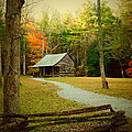 Fall Color's by Kathy R Thomas