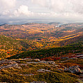 Fall Colors Of Acadia 6656 by Brent L Ander