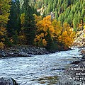 Fall Colors On The River by Lynn Hopwood