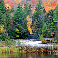 Fall Colors On The  Tahquamenon River   by Optical Playground By MP Ray
