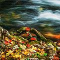 Fall Colors Stream Great Smoky Mountains Painted  by Rich Franco