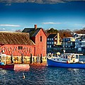 Fall Comes To Rockport by Tricia Marchlik