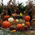 Fall Display by Wendy Gertz