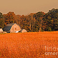 Fall Farm by Marian DeSalvo-Rodgers