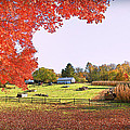 Fall Farm by Sheryl Bergman