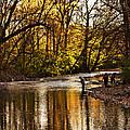 Fall Fishing by Tom Gari Gallery-Three-Photography