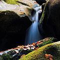 Fall Flow by Dan Sproul