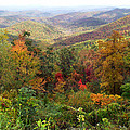 Fall Folage 3 Along The Blueridge by Duane McCullough