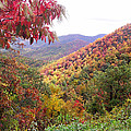 Fall Folage Along The Blueridge by Duane McCullough