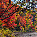 Fall Foliage At Elbow Pond by Ken Stampfer