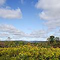 Fall Foliage Hilltop Landscape by Christina Rollo