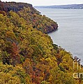 Fall Foliage On The New Jersey Palisades II by Lilliana Mendez