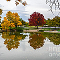Fall Fort Collins by Baywest Imaging