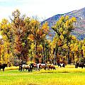 Fall Grazing by Gerald Blaine