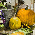 Fall Harvest by Heather Applegate