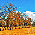 Fall Hayfield by Southern Photo