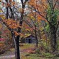Fall Homestead by Marty Koch