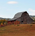 Fall by Image Takers Photography LLC