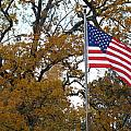 Fall In America by Michael MacGregor