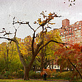 Fall In Central Park by Alice Gipson