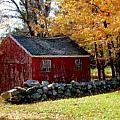 Fall In Connecticut by Diane Carlson