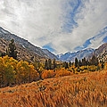 Fall In Lundy Canyon by Lynn Bauer