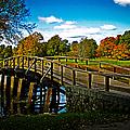 Fall In Massachusetts by Charlene Gauld