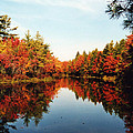 Fall In New England by Rita Miller