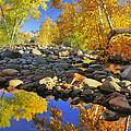 Fall In Oak Creek  by Dan Myers