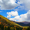 Fall In The Rockies by Shane Bechler
