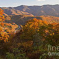 Fall In The Smoky Mountains by Dennis Hedberg