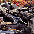 Fall In The Smoky Mountains by Harold Rau