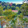 Fall In West Virginia by Gena Weiser