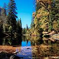 Fall In Yosemite by Tyler Kaufman