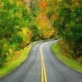Fall Is Coming Country Road by Bruce Nutting
