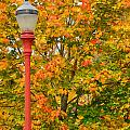 Fall Lamppost by Kirt Tisdale
