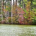 Fall Landscape 2 by Jeelan Clark