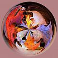 Fall Leaves Orb by Bill Barber