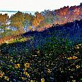 Fall On Garvin Heights by Susie Loechler